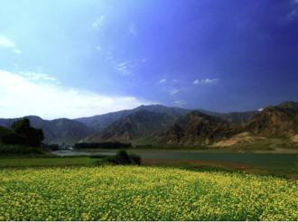 石羊河流域:走出高质量节水发展新路