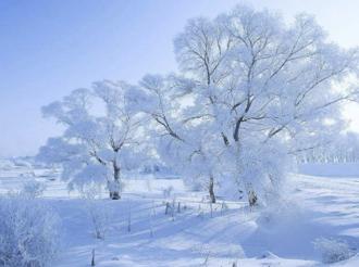 冰雪运动激活冰雪旅游