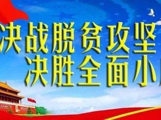 阜城青年党员陈冲毅然返乡创业 在脱贫攻坚路上奏响乡村振兴曲